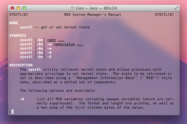 OS X Lion Terminal screenshot